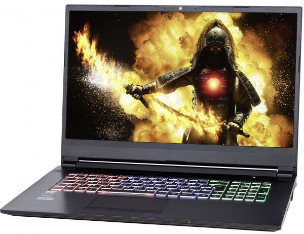 "G1743 i7-9750H (64GB, 2x 250GB SSD, 1TB HDD, GTX 1660Ti 6GB, Windows 10 - FHD nGT Wide View (17,3""))"